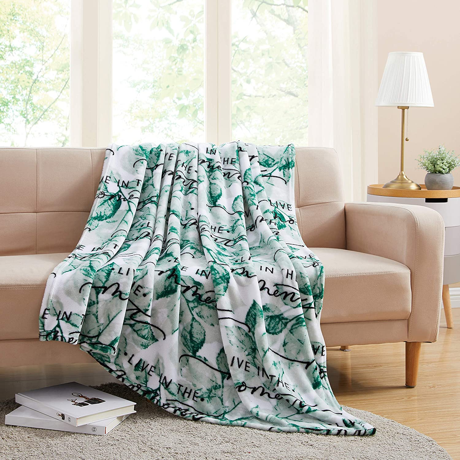 Morgan Home Fashions Velvet Plush Throw Blanket- Soft, Warm and Cozy, Lightweight for All Year Round Use 50 x 60/50 x 70 Inches Soft Velvet Plush in Many Styles (Live in The Moment)