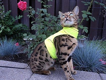 Mynwood - Arnés para Gato de Alta Visibilidad, a Prueba de Escapes