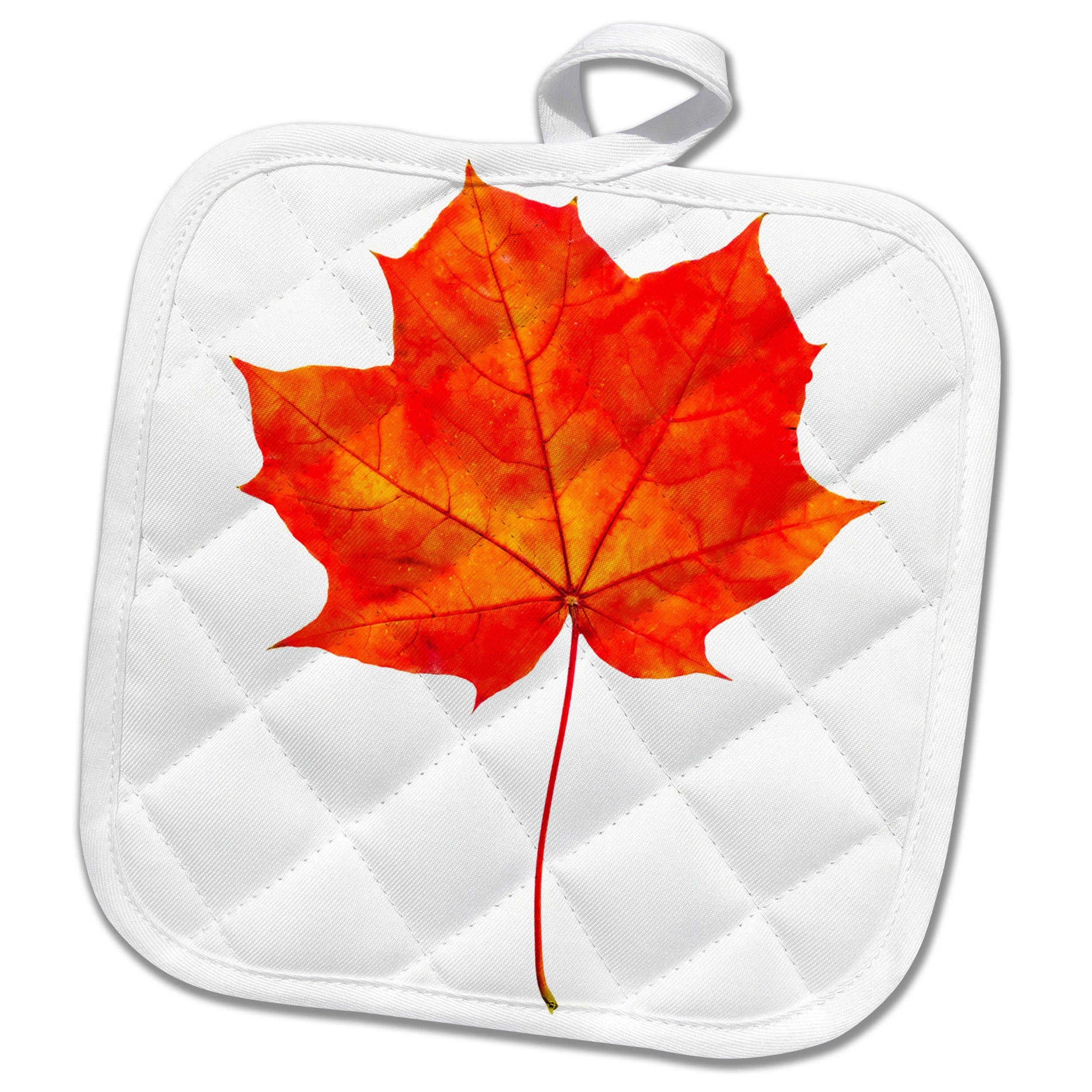3dRose Alexis Design - Floral - Red maple leaf transparent background - 8x8 Potholder (phl_264133_1)