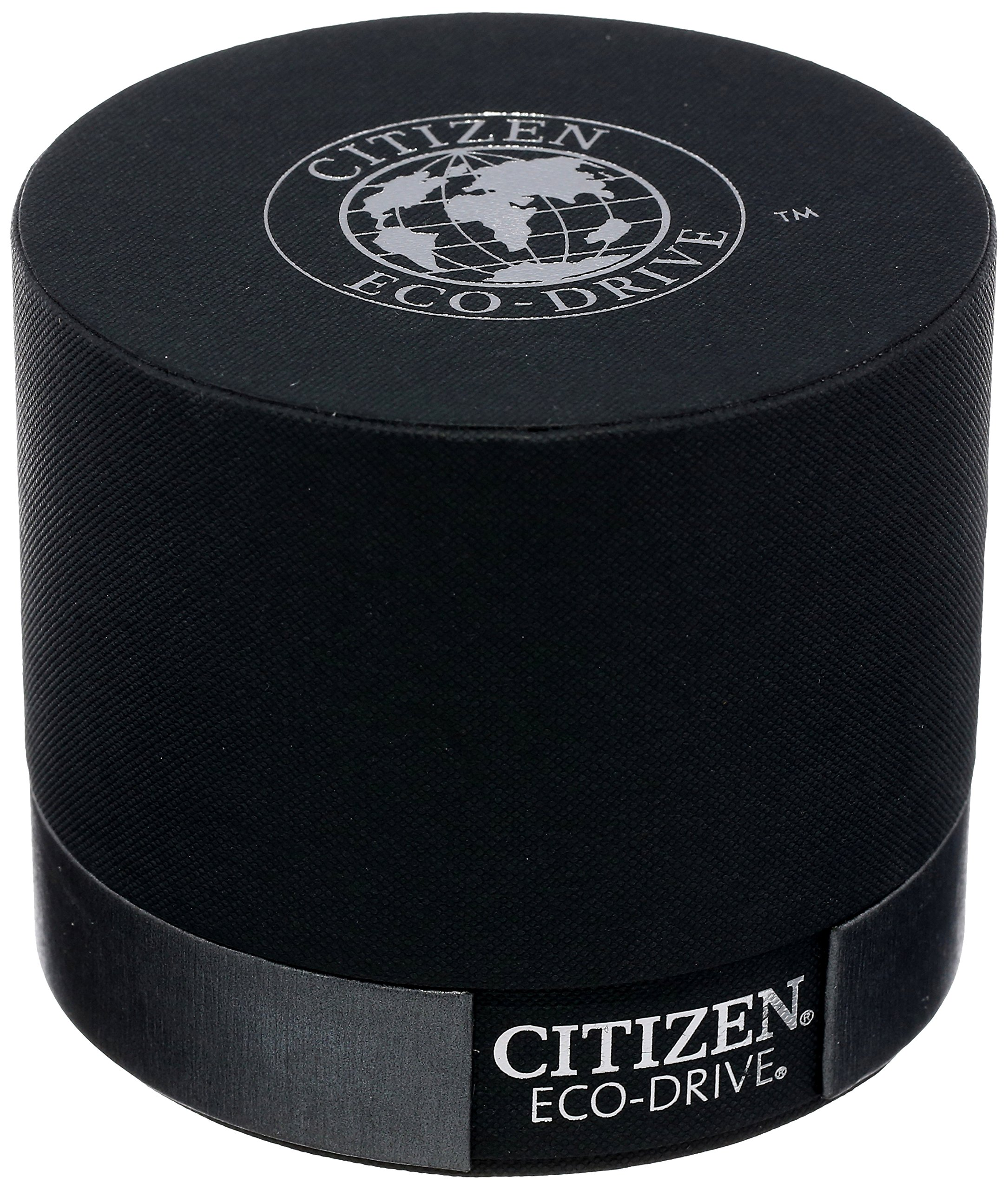 Citizen Eco-Drive Men's AT4010-50E Titanium Perpetual Chrono A-T Watch by Citizen (Image #4)