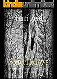 Secret Hollows (Mary O'Reilly Series Book 7)
