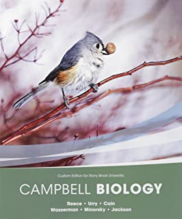 Chemistry 134 lab manual hayden mcneil 9780738089959 amazon campbell biology package stonybrook university fandeluxe Image collections