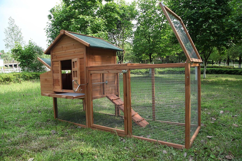 Amazon.com: ECOLINEAR - Cobertizo de madera para gallinas y ...