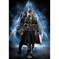 Animales Fantásticos: Los Crímenes de Grindelwald (SteelBook) [Blu-ray]