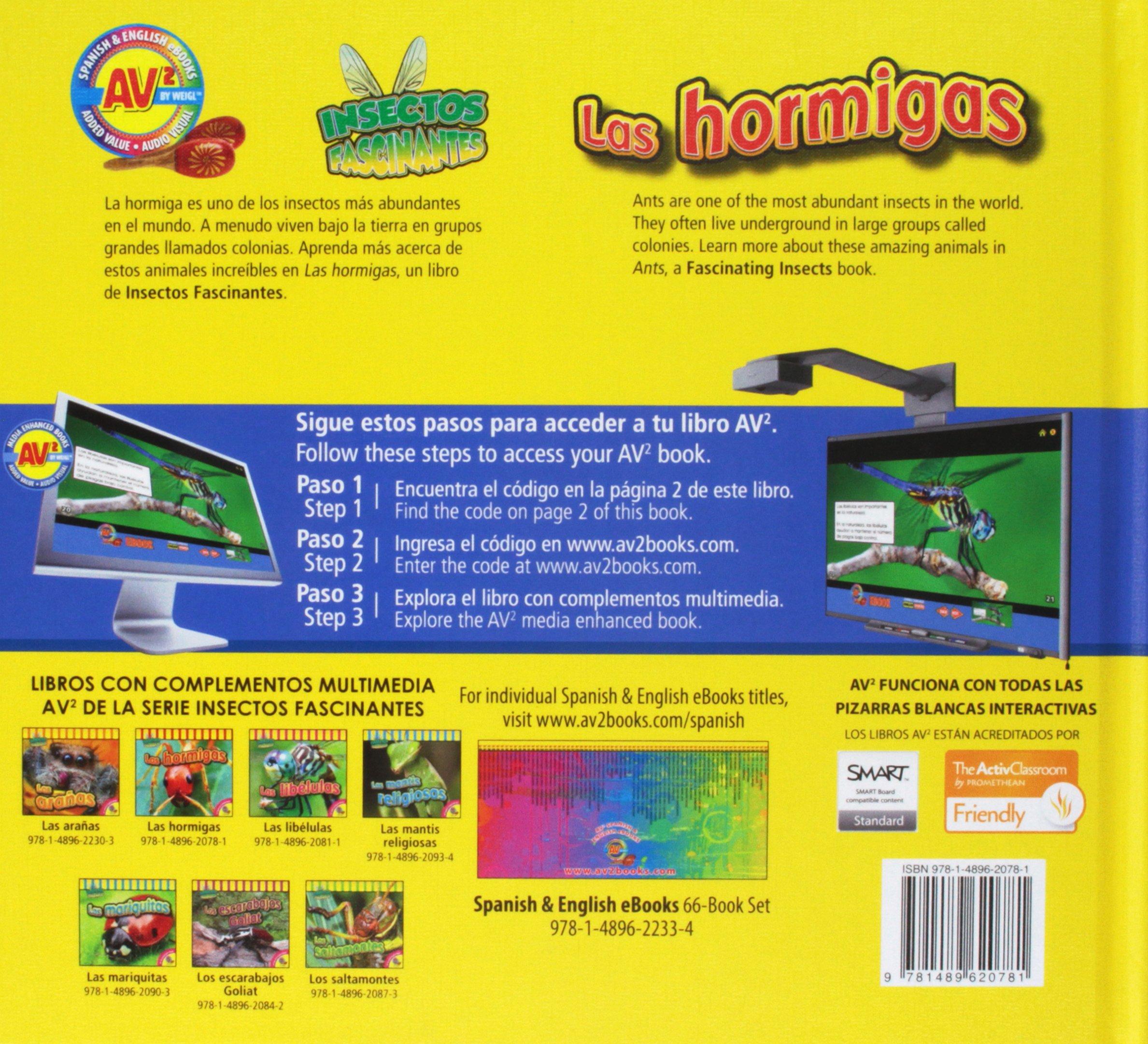 Las hormigas / Ants (Insectos fascinantes) (Spanish Edition): Aaron ...