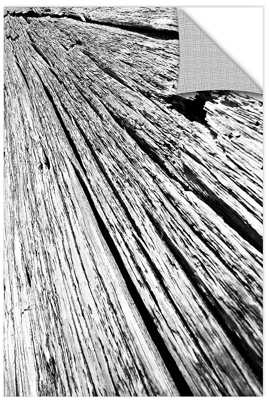 Removable Wall Art Mural 24X36 ArtWall James Thompsons Driftwood