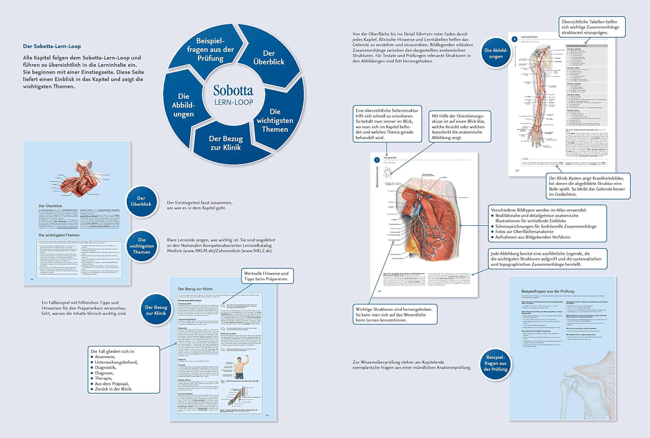 Sobotta, Atlas der Anatomie - 3 Bände und Tabellenheft im Schuber ...