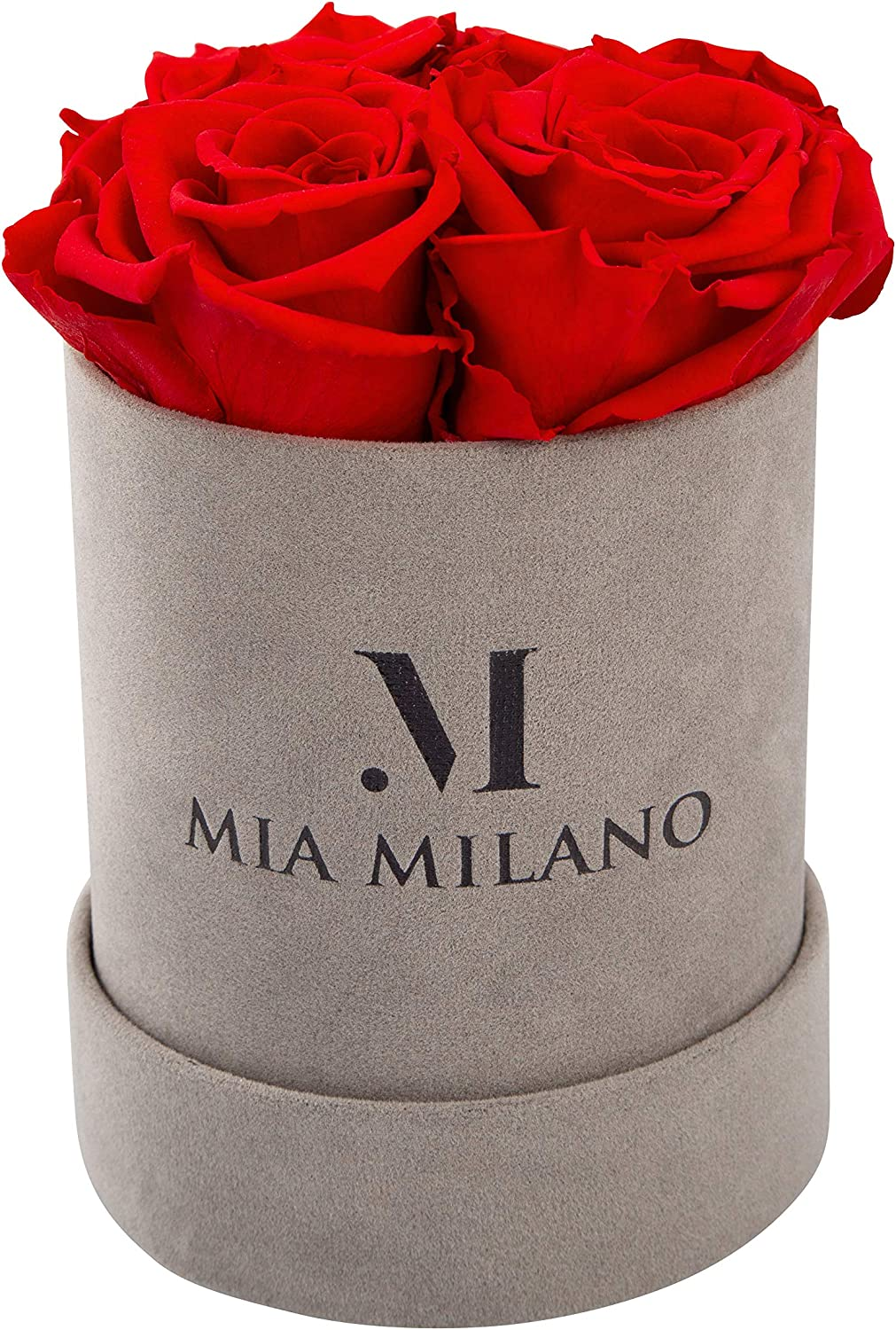 Mia Milano Velvet Box with 4 Infinity Roses | Flower Box (Home Decor) Preserved Rose 3 Years Durable