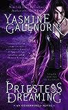 Priestess Dreaming (Otherworld Series Book 16)