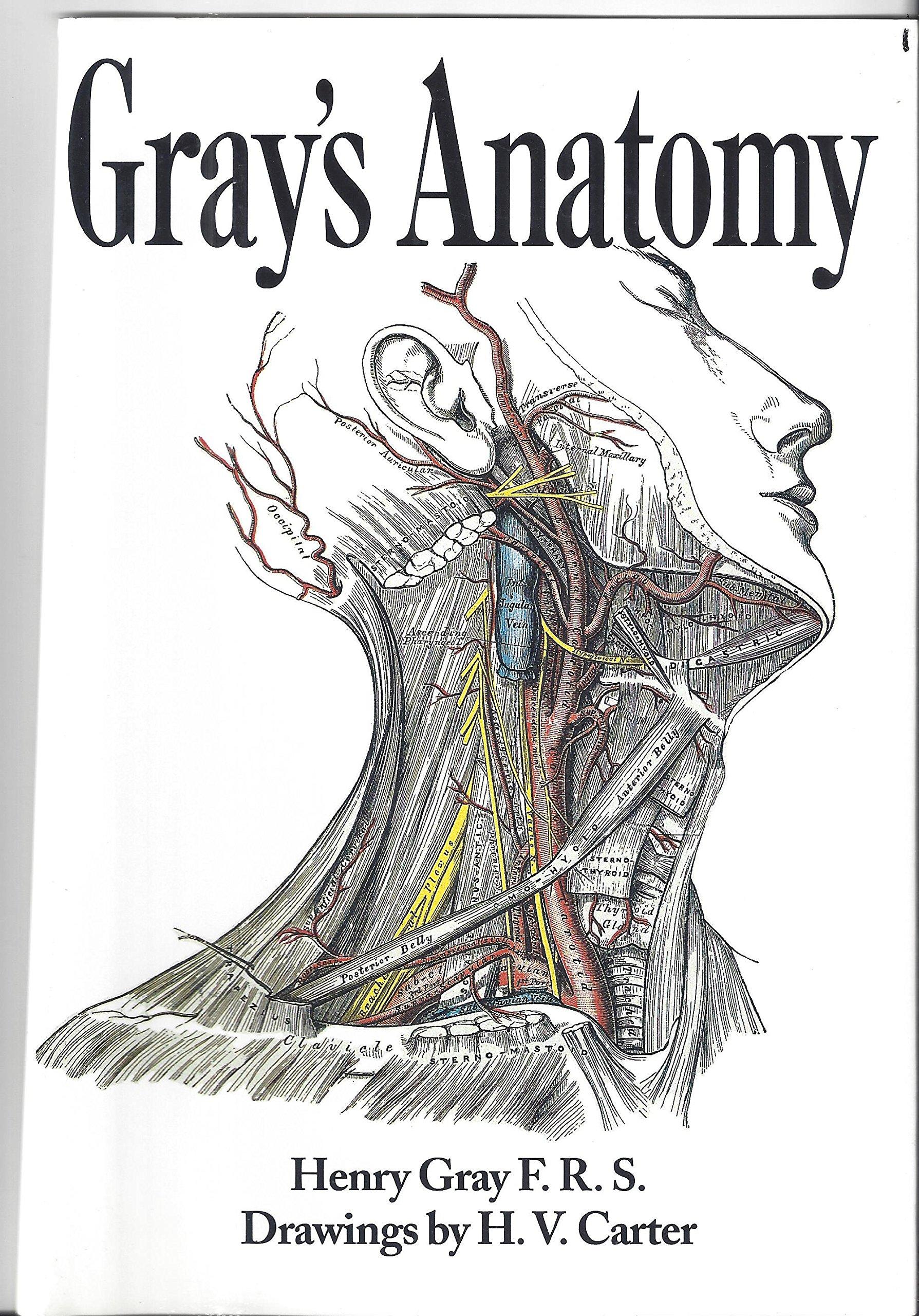 Gray\'s Anatomy: Henry Gray F.R.S.: 9780760722732: Amazon.com: Books