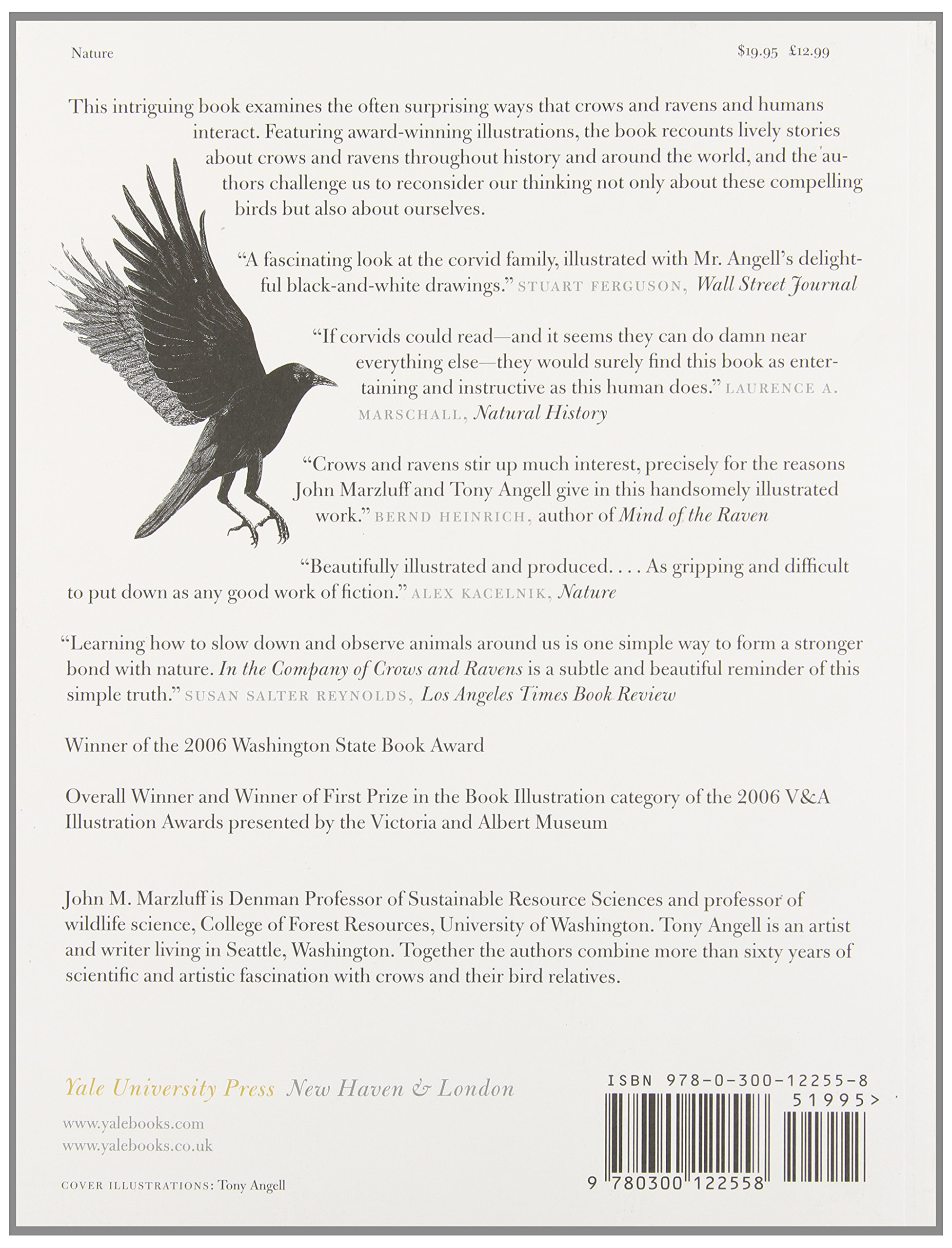 In The Company Of Crows And Ravens John M Marzluff Tony Angell