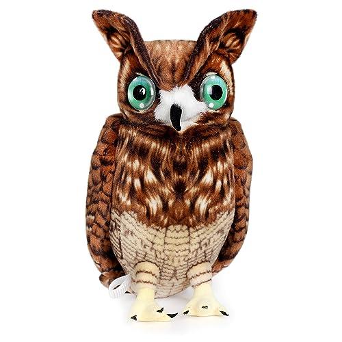 Bank Of Marin Stock Quote: Giant Owl: Amazon.com