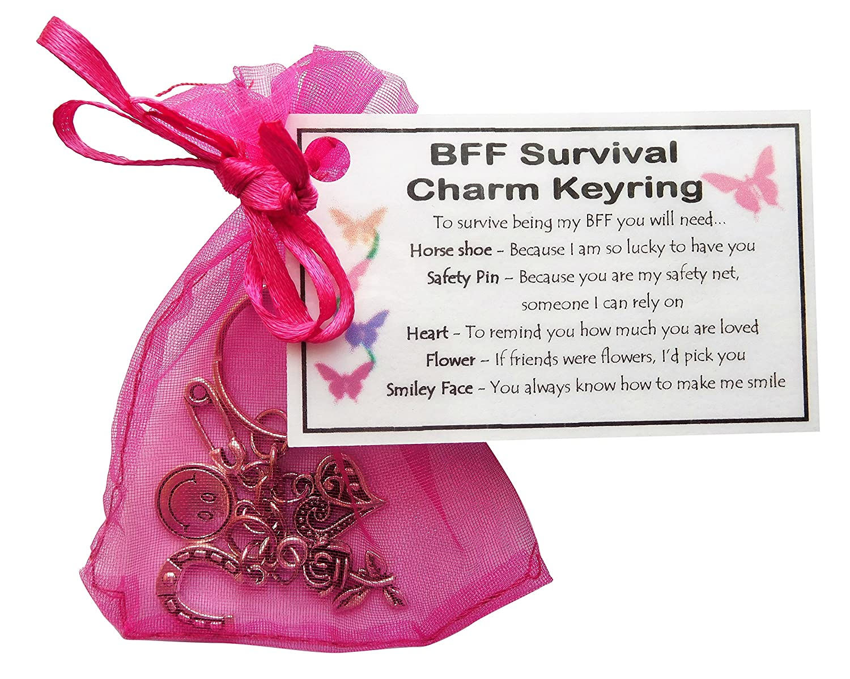 Friendship Best Friend Survival Charm Keyring