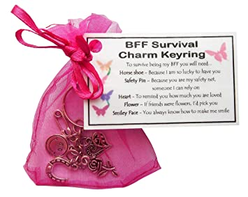 Friendship Best Friend Survival Charm Keyring