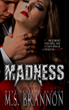 Madness (Revenge Series Book 3)