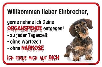 Dackel Rauhaar Schild Vorsicht Bissiger Hund 15x20-40x60cm Teckel