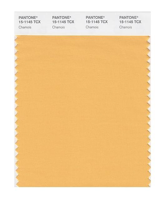 Pantone Smart Tarjeta de muestra de color: Amazon.es ...