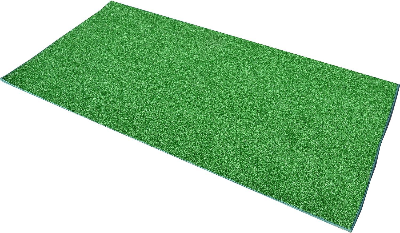 Astro Turf Carpet Carpet Vidalondon