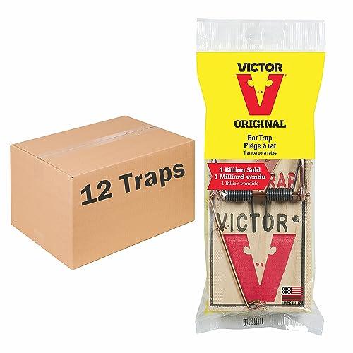 Best Rat Trap Amazon Com