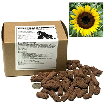 Sunflower (Black Oil) Guerrilla Droppings - Seed Pellets for Guerrilla Gardening (Helianthus annuus) : Garden & Outdoor