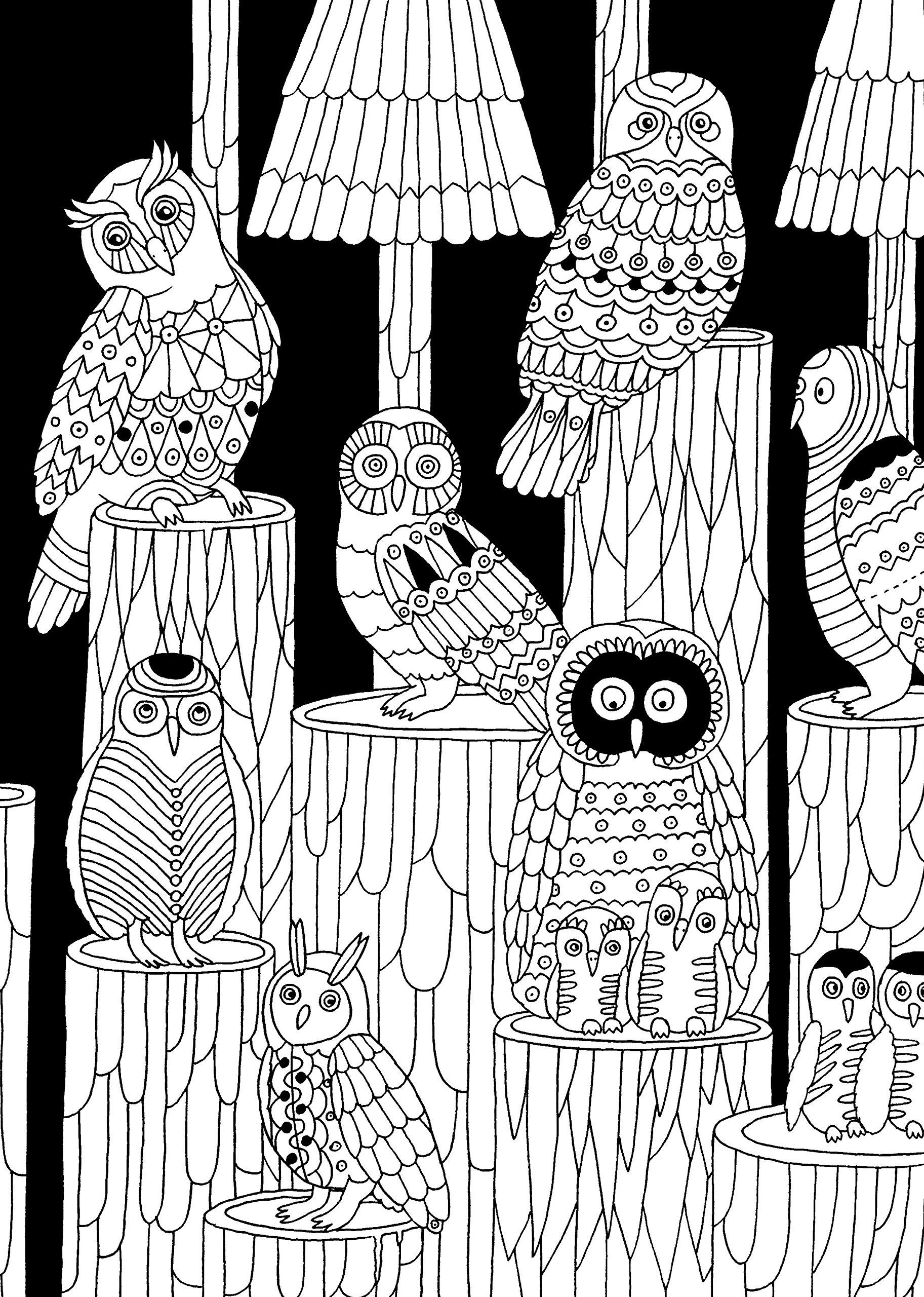 Eulen Malbuch für Erwachsene: Malblock für Erwachsene - Nacht ...