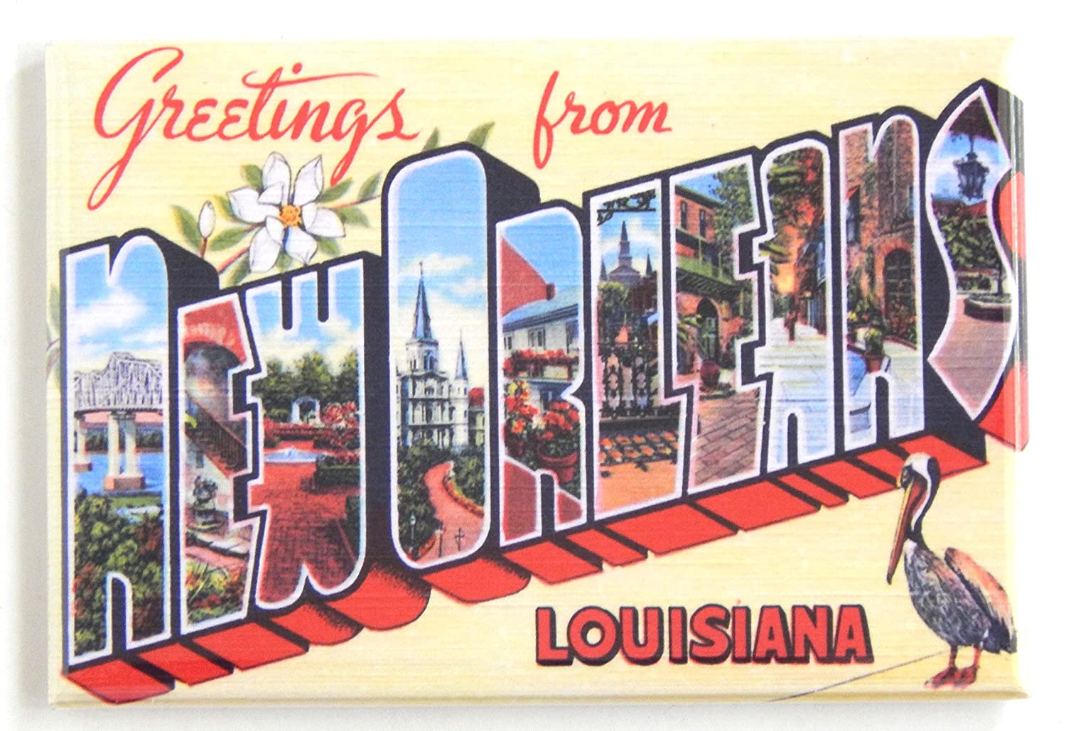 Amazon Greetings From New Orleans Pelican Fridge Magnet 2 X
