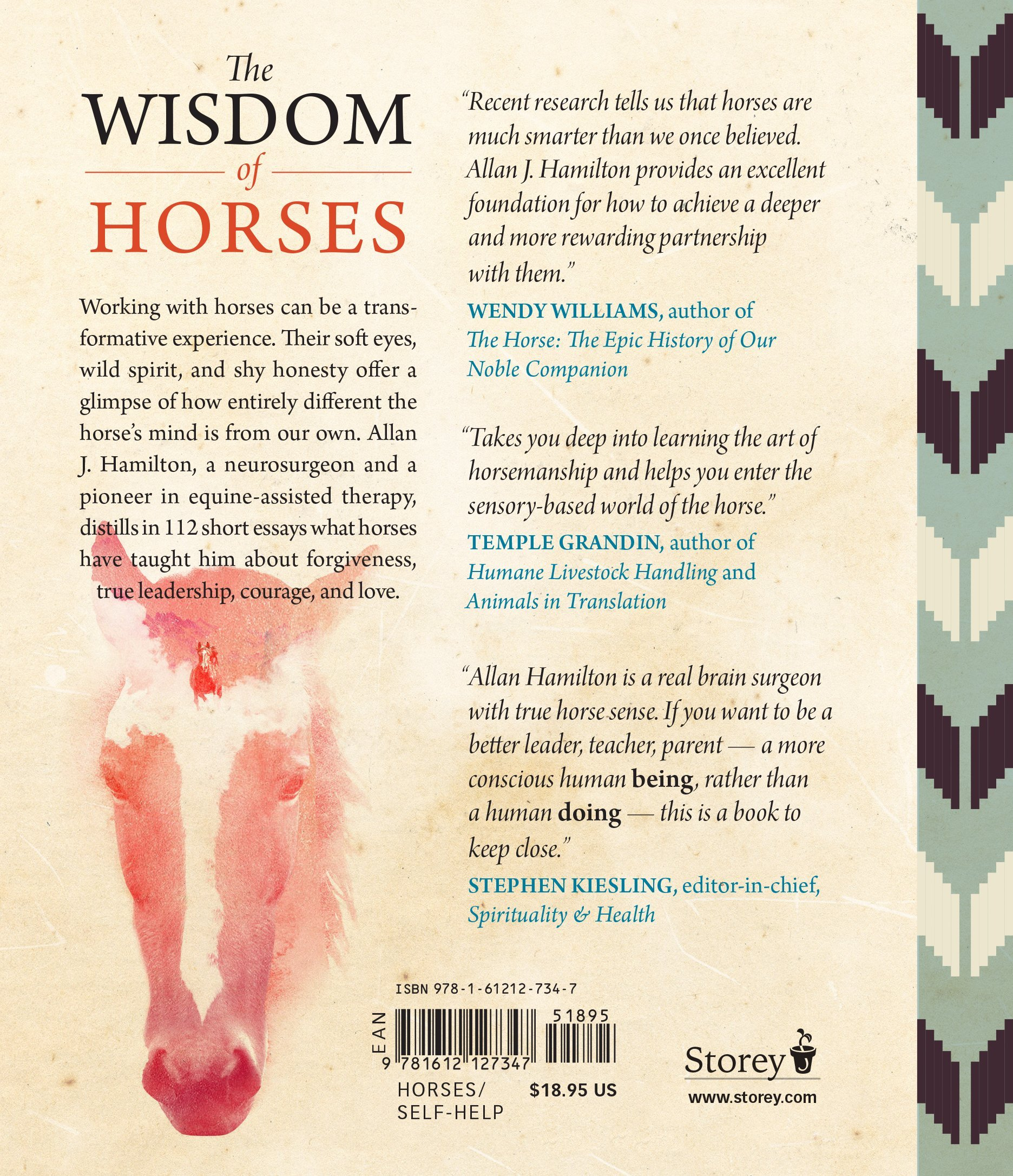 Lead With Your Heart    Lessons From A Life With Horses: Allan J  Hamilton Md: 9781612127347: Amazon: Books