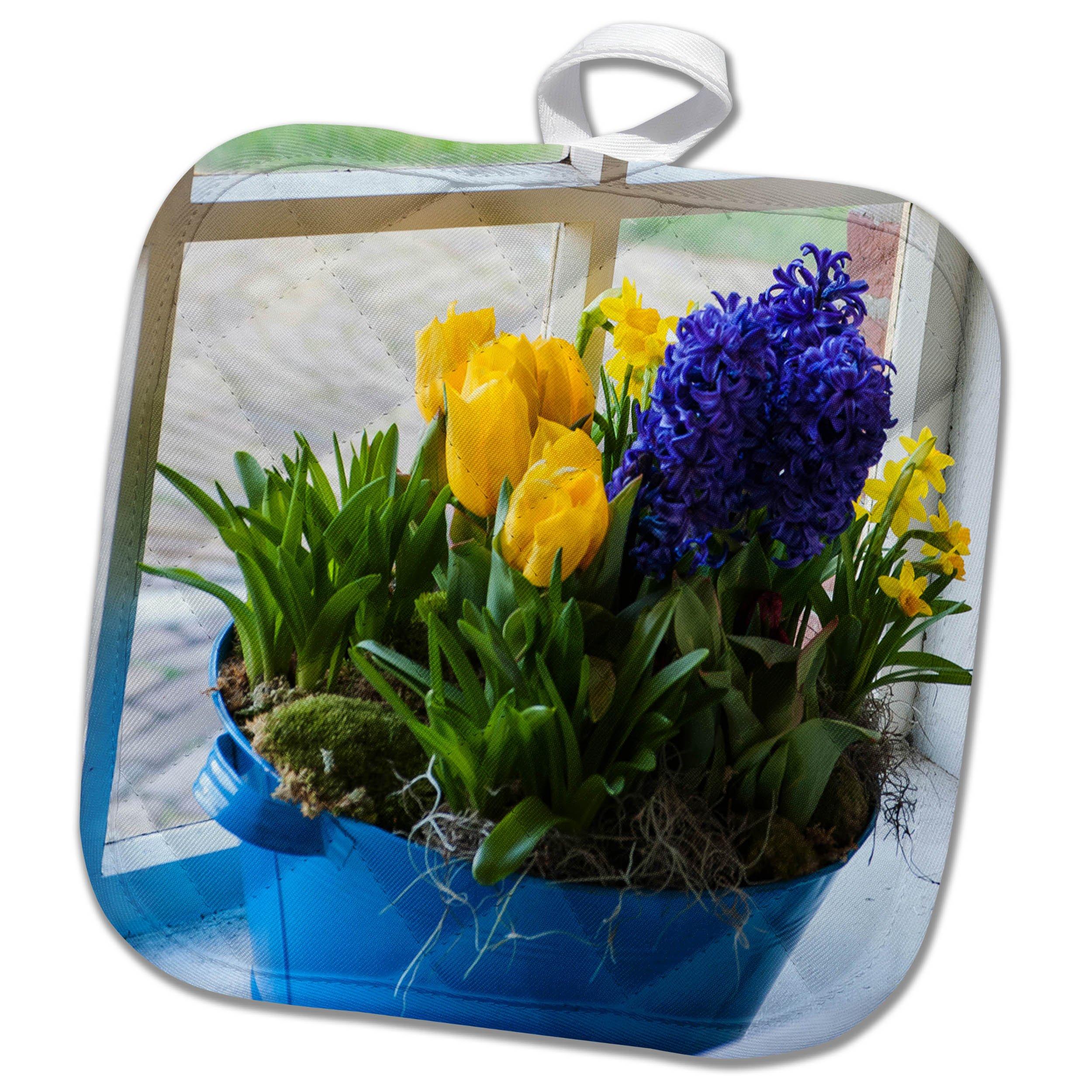 3dRose Danita Delimont - Flowers - Window with spring flower arrangement - 8x8 Potholder (phl_257775_1)
