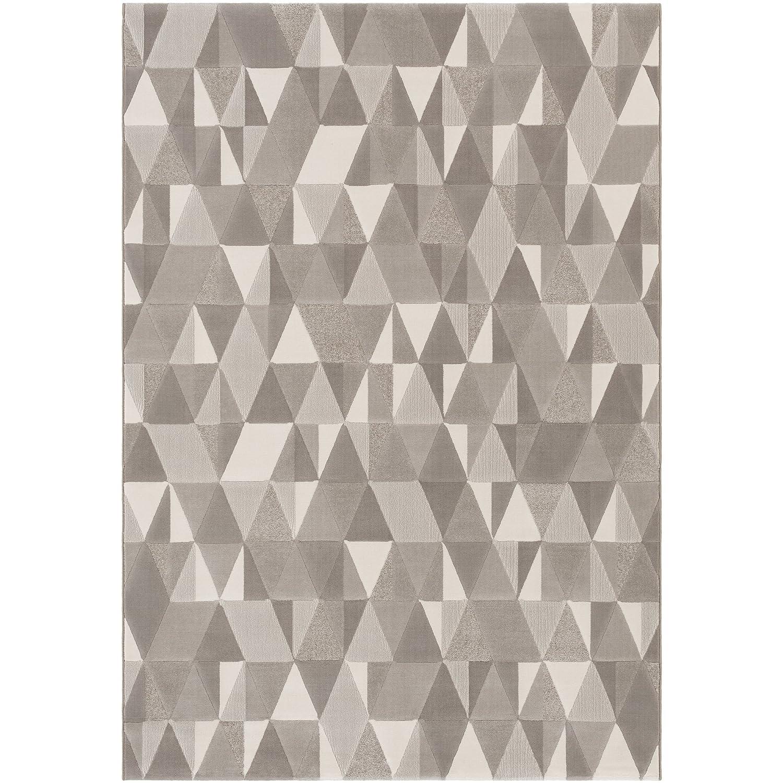 Thistle Gray Modern Area Rug 2 x 3