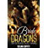 Bride of The Dragons: Shifter Menage Fantasy Romance