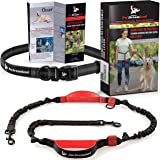 Pet Dreamland Hands Free Dog Leash - Improved Running Leash with Triple Bungee Cords and Dual Padded Handles