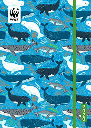 Amazon.com: WWF Whales Calendario académico 2020 Cubierta ...