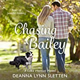 Chasing Bailey: A Lake Harriet Novel