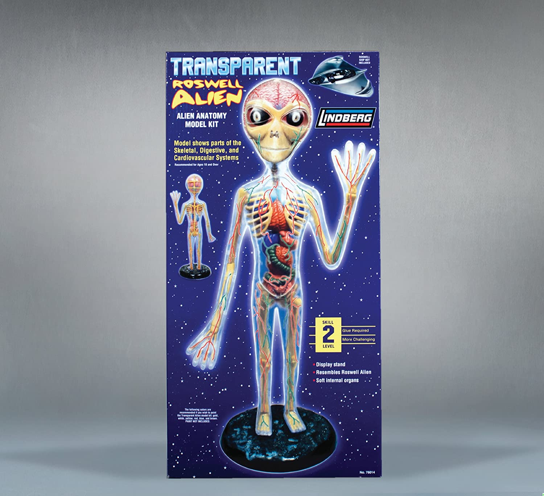 Amazon.com: Lindberg Transparent Alien figure model kit: Toys & Games