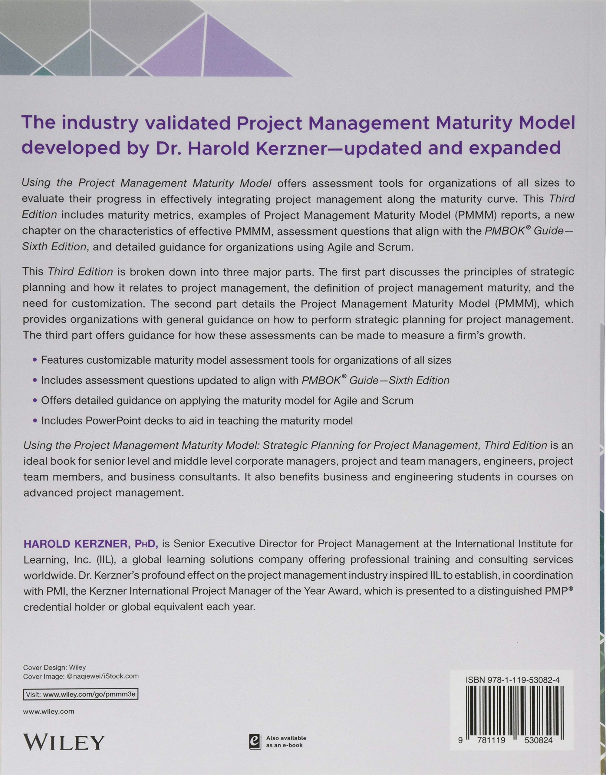 Using the Project Management Maturity Model: Strategic Planning for