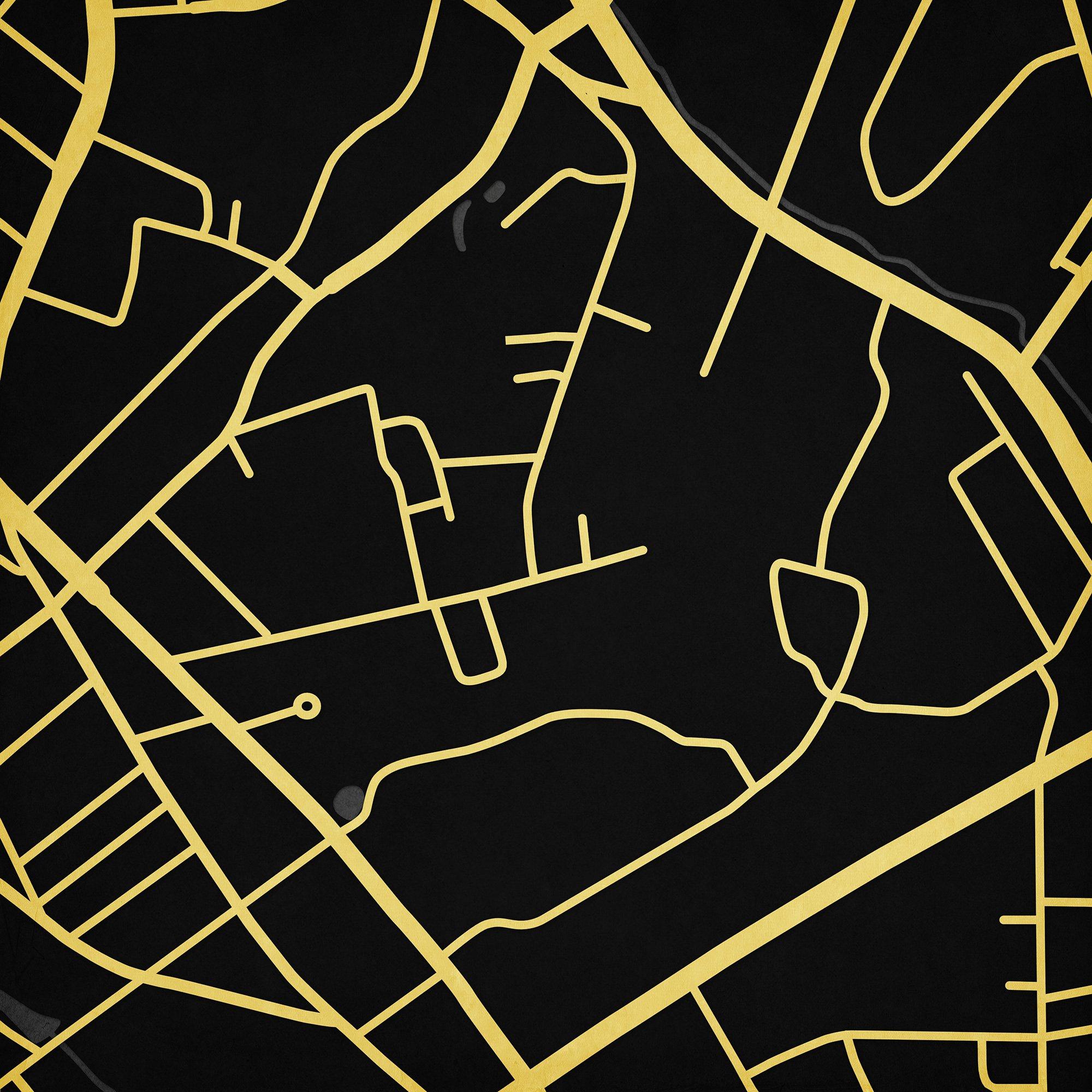 Wofford College Campus Map Art, Unframed 12'' x 12''