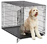 XL Dog Crate | MidWest iCrate Folding Metal Dog