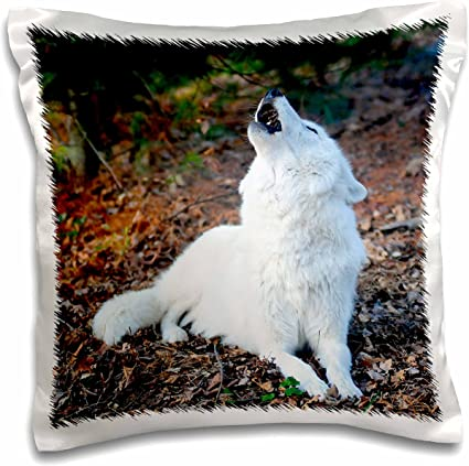 16 x 16 Howling 2 Pillow Case 3dRose pc/_124322/_1 White Arctic Wolf