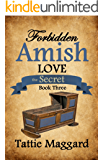The Secret (Forbidden Amish Love Book 3)