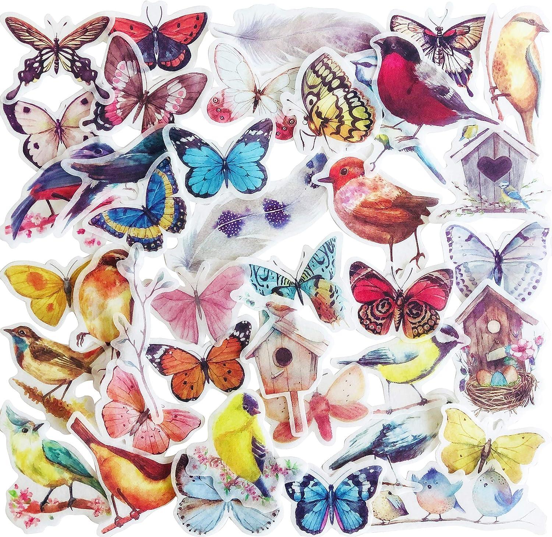 Food & Nature Sticker Packs for Children & Adults – Coffee, Cupcakes, Donuts, Fruits, Ice Cream, Milkshakes, Birds, Butterflies, Flowers, Landscape, Adventure, Tourism & Travel