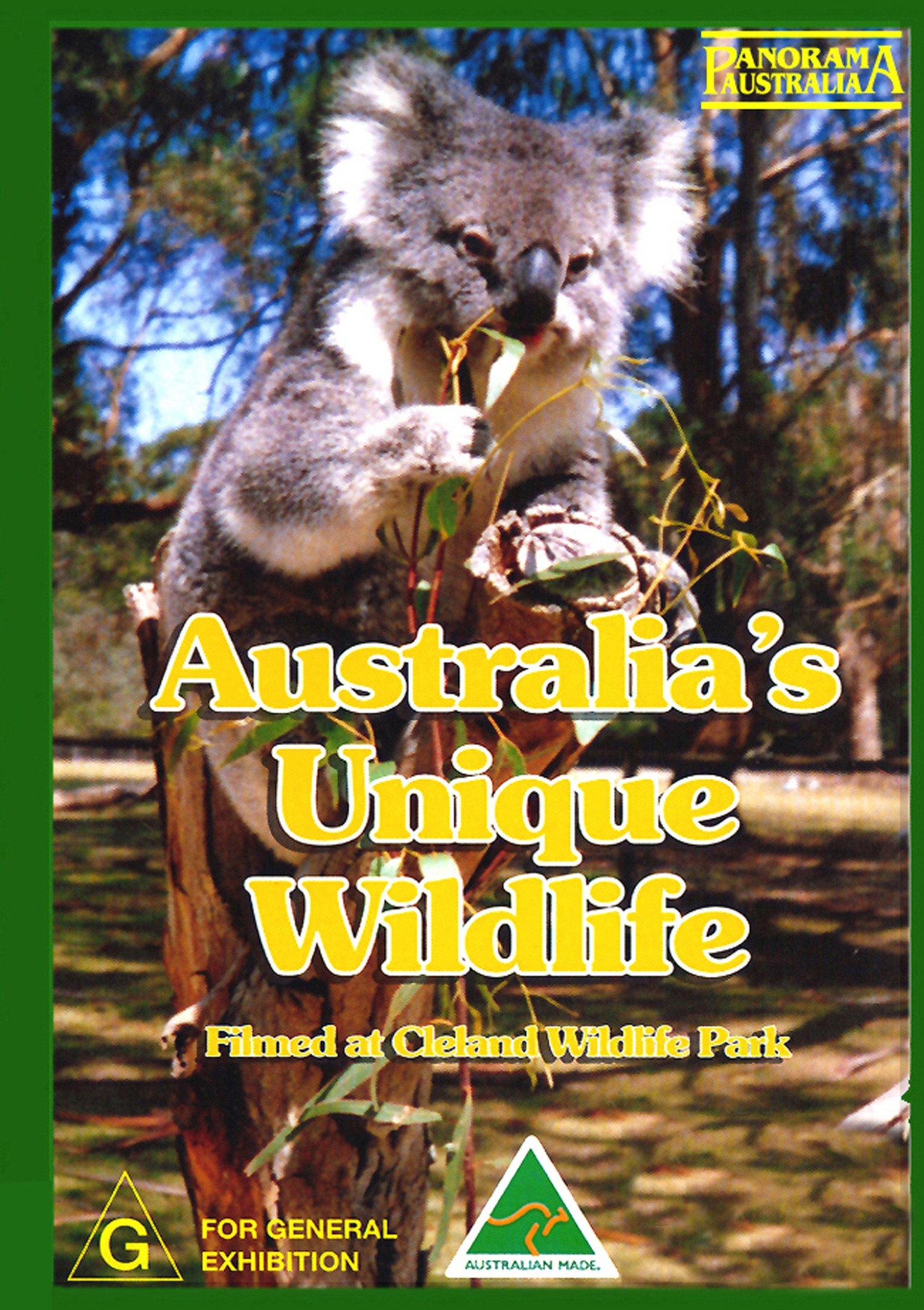 Australia's Unique Wildlife