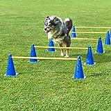 Kegel-Hürden 5er Set, blau/gelb, mit Tragetasche, für Agility - Hundetraining