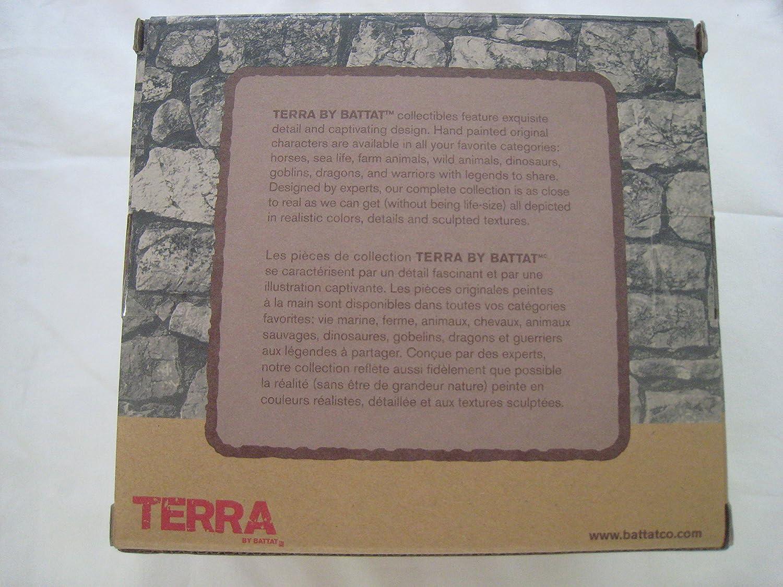 Terra Fantasy 5