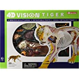 Famemaster 4D Vision Tiger Anatomy Model