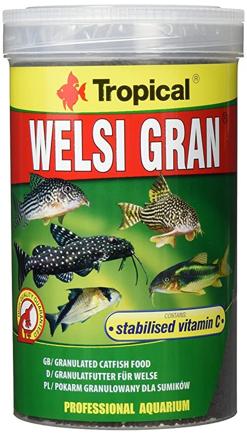Tropical - Welsi Gran