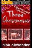 Three Christmases: A Things We Never Said Christmas bonus. (English Edition)