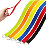 DCSUIT Slip Leads Dog Leash Pet Rope - 6 FT Strong Pulling Durable Leashes with O-Ring,6 Colors Soft Strap for Puppy…