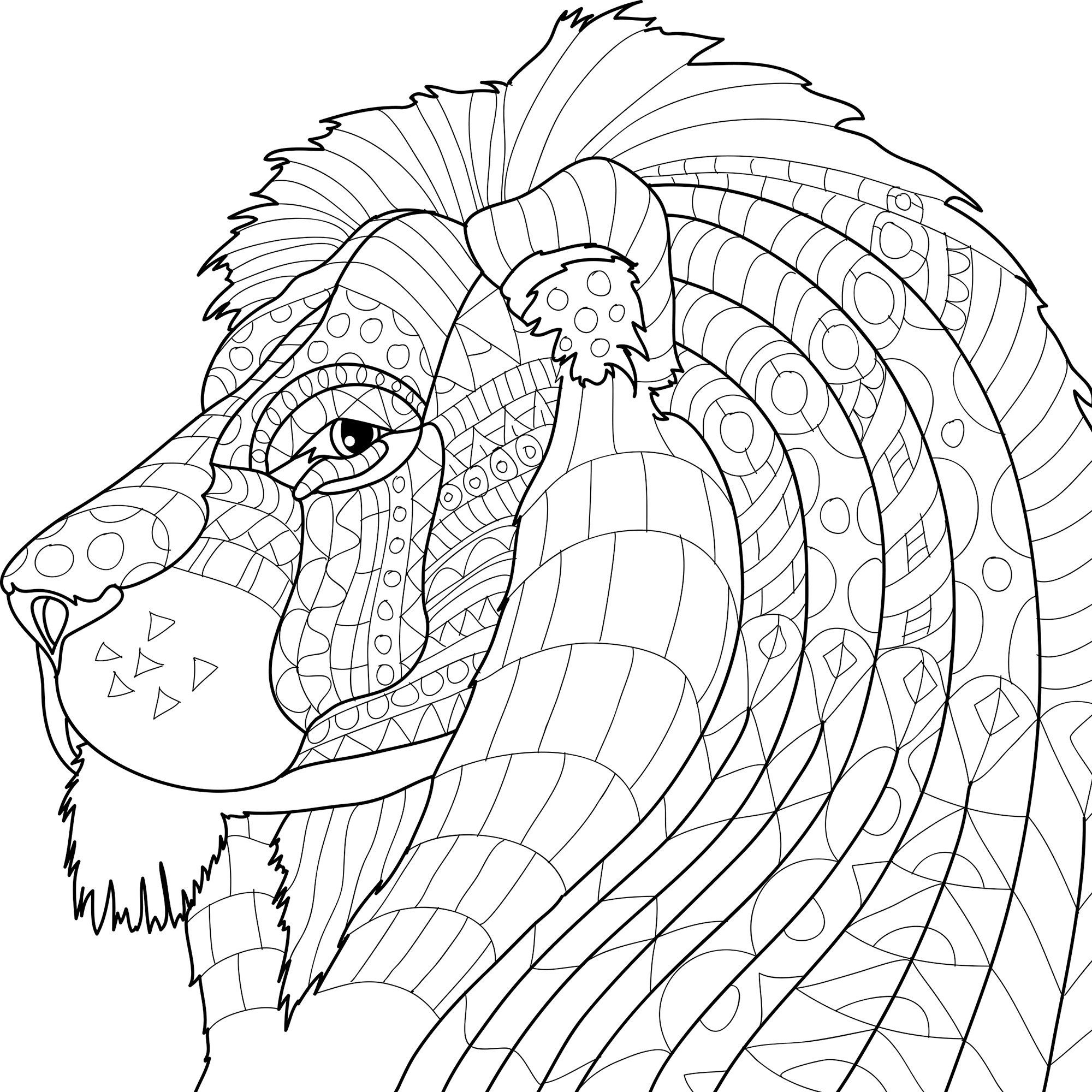 Animal Kingdom Adult Coloring Book With Color Pencils - Color With ... | 2000x2000