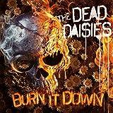 Burn It Down (lp+cd) [VINYL]