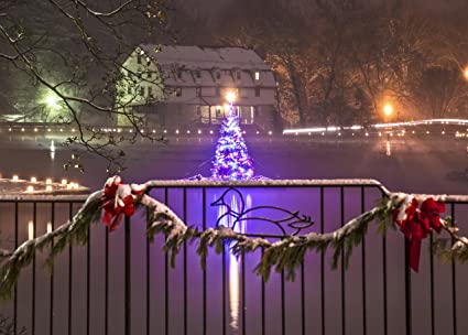 "Boiling Springs, PA- ""Through the Fence"" Box of 12 Christmas Cards - Amazon.com : Boiling Springs, PA-"